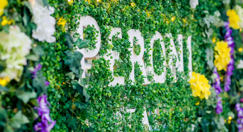 Peroni flower